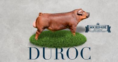 Duroc Red Pork